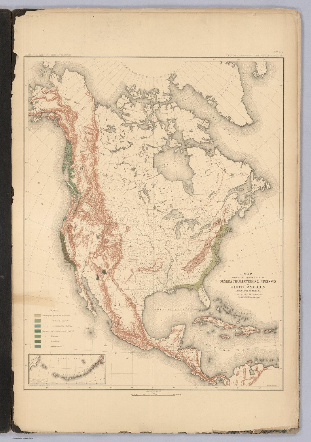 Distribution of the Genera Chamaecyparis & Cupressus in North America.