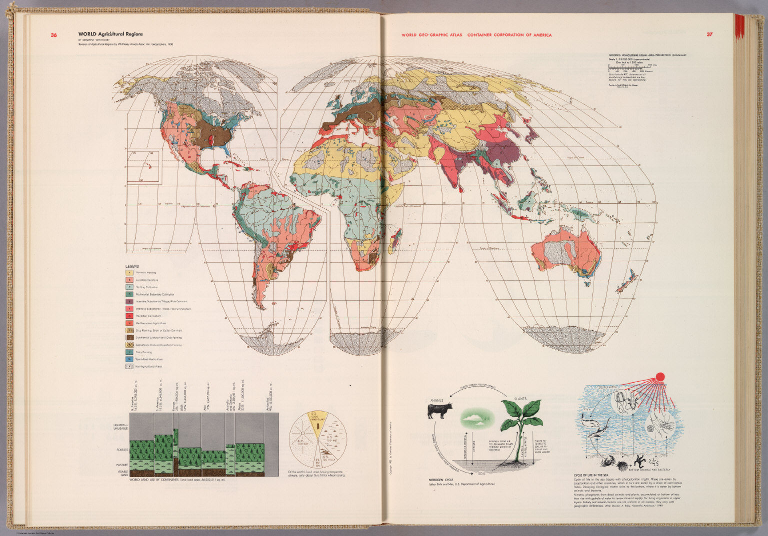 World agricultural regions david rumsey historical map collection world agricultural regions publicscrutiny
