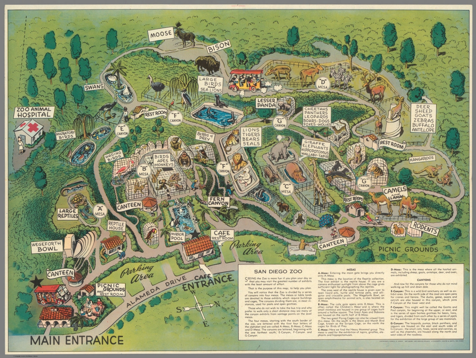 San Diego Zoo Map San Diego Zoo.   David Rumsey Historical Map Collection San Diego Zoo Map