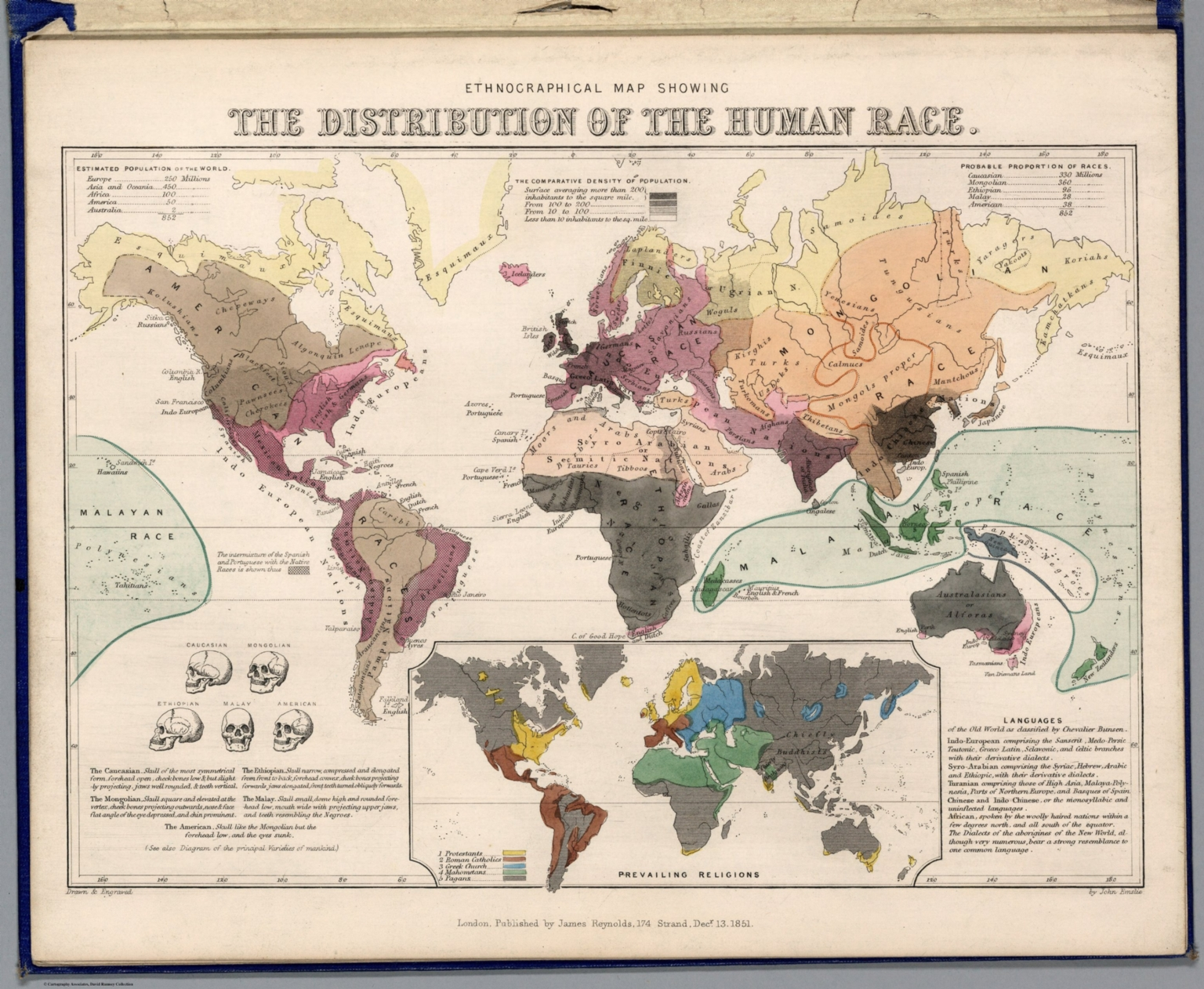 Ethnographical Map Showing The Distribution Of The Human Race