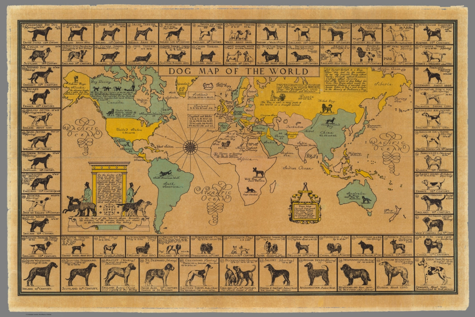 Dog map of the world david rumsey historical map collection dog map of the world gumiabroncs Image collections